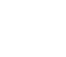 Mile High Multisport